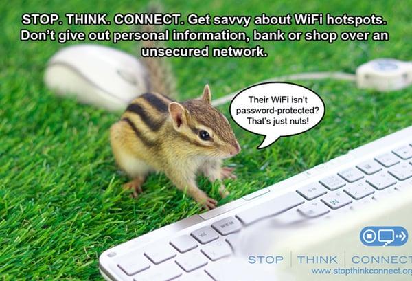 STC_Meme_Squirrel